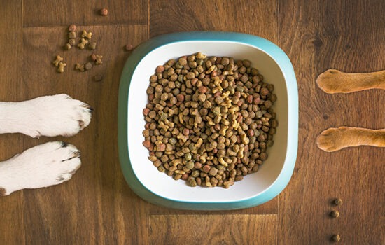 Pet food and supplement quality